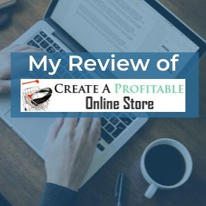 Profitable Online Store Review