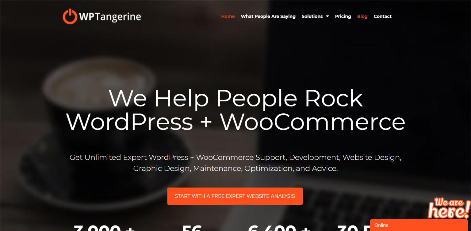 Best Unlimited WordPress Development Company - WP Tangerine