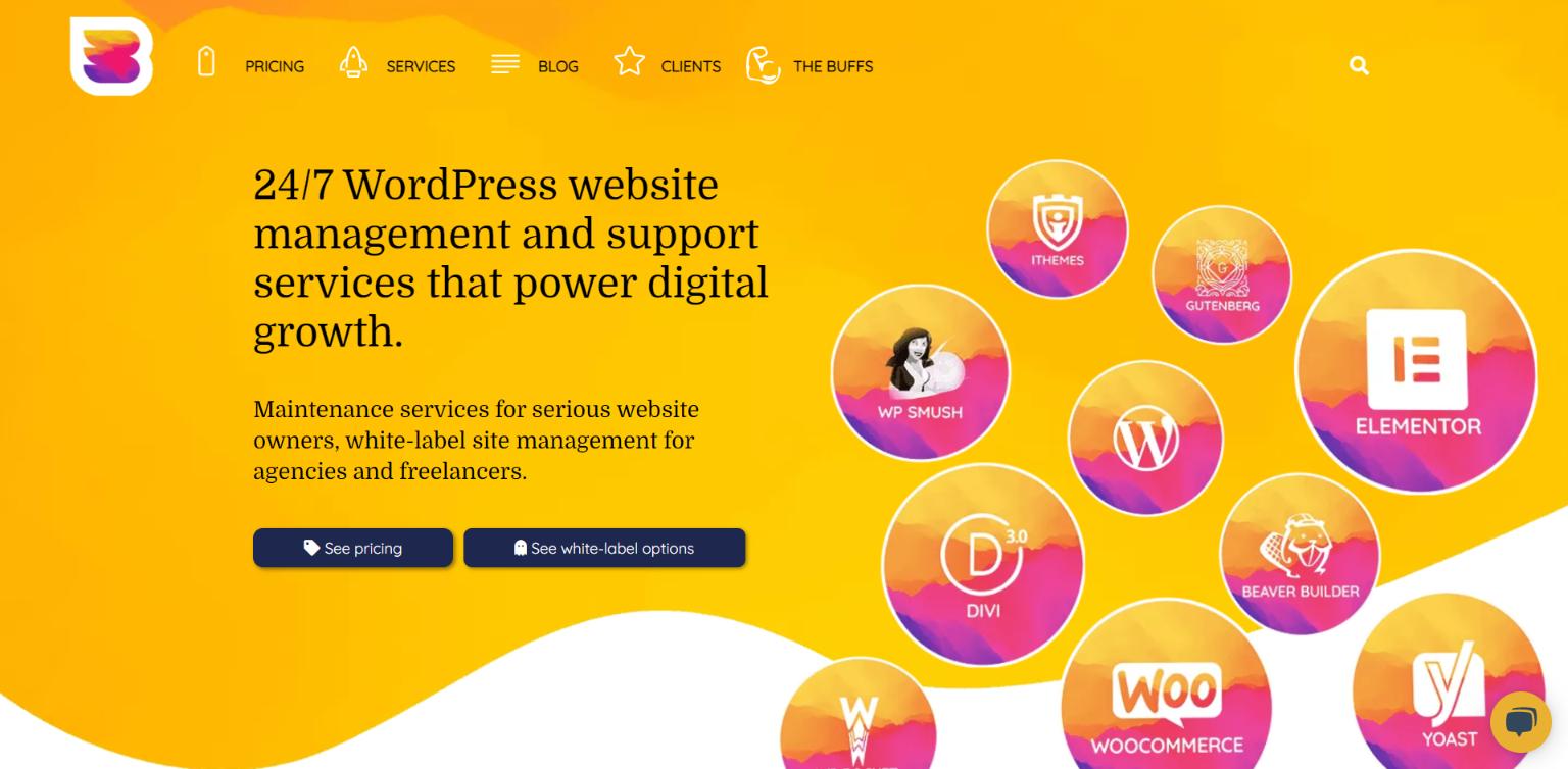 WordPress Malware Removal Services - WP Buffs